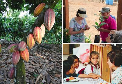 links: Kakaobaum mit reifen Früchten. oben: Marli Hoppe-Ritter beim Pfropfen, unten: Marli Hoppe-Ritter im Austausch mit Kindern aus Waslala. Fotos: © Ritter-Nieragden.com
