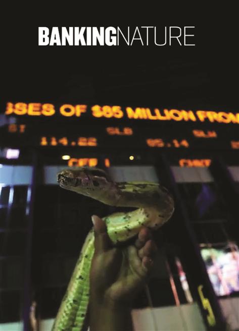 Wird die Umwelt zum Spekulationsprojekt? © Javafilms