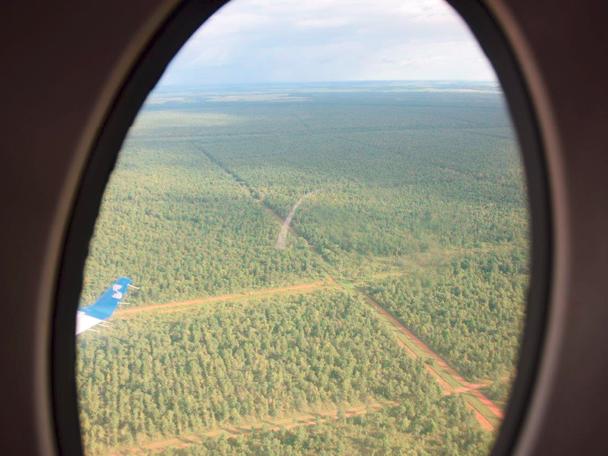 Wo früher karge Steppe war, reichen heute Wälder, so weit das Auge reicht. © Isabela Cajiao-Angelelli