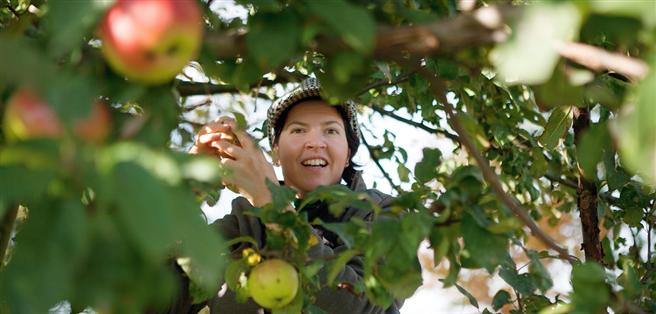 Das Berliner Projekt um Anja Fiedler 'Stadt macht satt' geht den Schattenseiten globaler und industrieller Lebensmittelproduktion entgegen. © Stadt macht satt