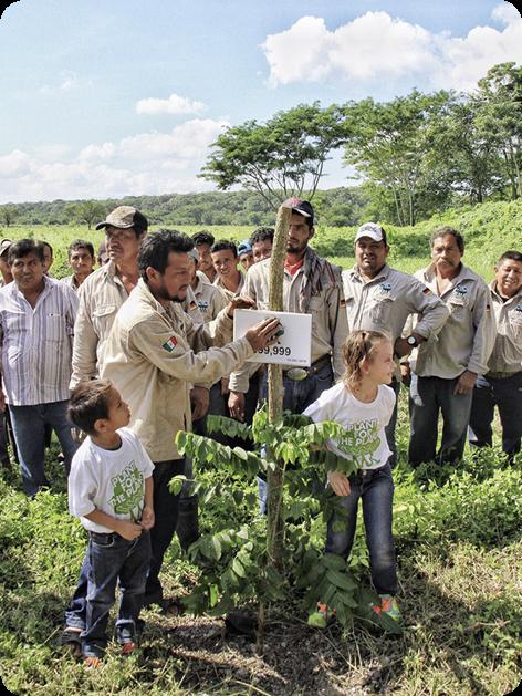 Jeder einzelne Baum hilft dabei, das Klima und damit unser Leben auf der Erde zu schützen. © Plant-for-the-Planet