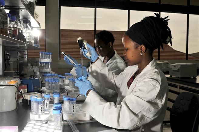 Der DAAD arbeitet unter anderen mit dem International Livestock Research Institute (ILRI) zusammen, wo daran geforscht wird, Armut in Entwicklungsländern zu verringern und die Lebensmittelsicherheit zu erhöhen. Copyright: ILRI David White