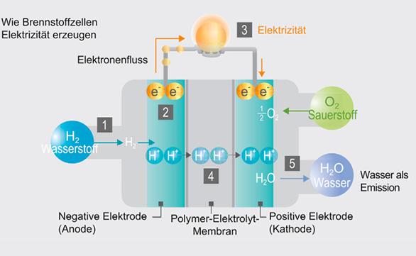 Der Einsatz von Brennstoffzellen und Elektromotoren ist sinnvoll, da die Umwandlung von chemischer in elektrische Energie in der Brennstoffzelle effizienter ist, als die Verbrennung des Treibstoffs in der Verbrennungskraftmaschine. © H2 Mobility