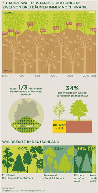 © Waldeigentümer