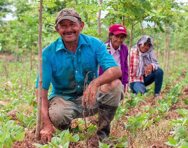 Aufforstungsprojekte können Arbeitsplätze, Artenreichtum und Klimaschutz bewirken. Achten Sie deshalb bei Kompensationsprojekten auf ökologische und soziale Standards. © Primaklima e.V.