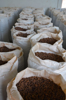 Nachhaltiger Kakao für Ritter Sport. Foto: Ritter Sport