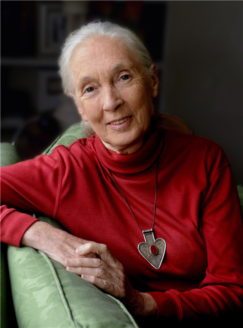 Jane Goodall, PhD, DBE; Founder - the Jane Goodall Institute & UN Messenger of Peace © Stuart Clarke