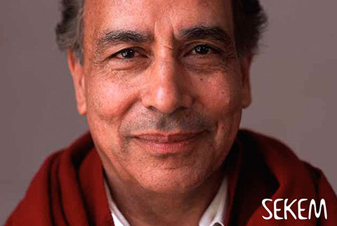 Professor Abouleish setzt sich seit Jahrzehnten in hohem Maße auch ehrenamtlich für Völkerverständigung, Umweltschutz und Nachhaltigkeit ein. Foto: www.sekem.com