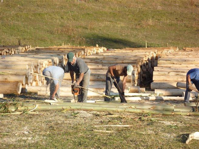 Chilenische Arbeiter zerlegen Baumstämme. © WeltGrund AG