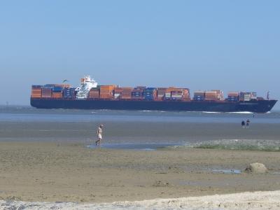 Container sind die Basis des internationalen Frachtverkehrs. Die Lebensspanne eines solchen Frachtcontainers beträgt aber im Durchschnitt nur zehn bis zwölf Jahre. © Xenia Kehnen-Weide / pixelio.de