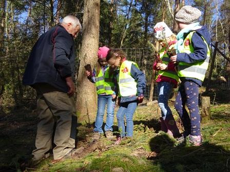 Über 300 Ilmenauer Kinder aus Kindergärten und Schulen pflanzten einen Baum in 'ihrem' Ilmenauer Stadtwald am Hangeberg. © PEFC