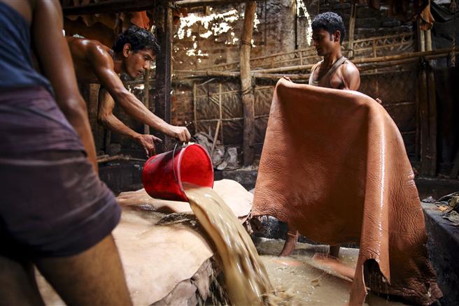 Gerberei in Bangladesch © GMB Akash