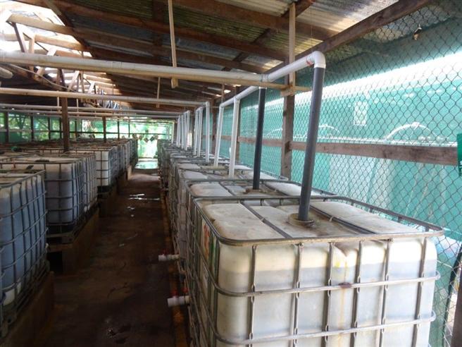 Die Regenwasseraufbereitung auf der Finca. © PRS