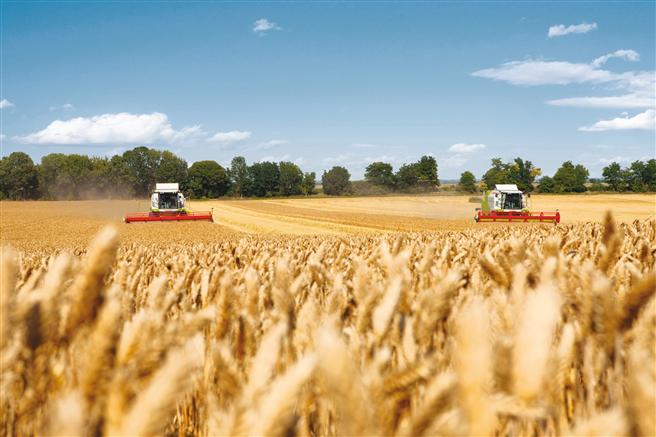 Bayer und das Centre for Crop Health and Protection (Zentrum für Pflanzengesundheit und Pflanzenschutz) richten ihr Augenmerk auf die Pflanzengesundheit – mit dem Ziel, die Produktivität in der Landwirtschaft zu erhöhen. © Bayer AG