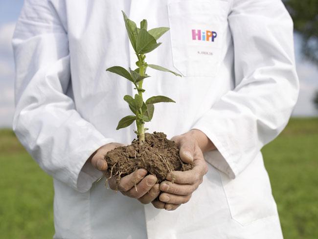 Nachhaltiges Denken und Handeln hat im Familienunternehmen HiPP Tradition und ist ein erklärtes Unternehmensziel des weltweit größten Verarbeiters von Bio-Rohstoffen. Foto: HiPP