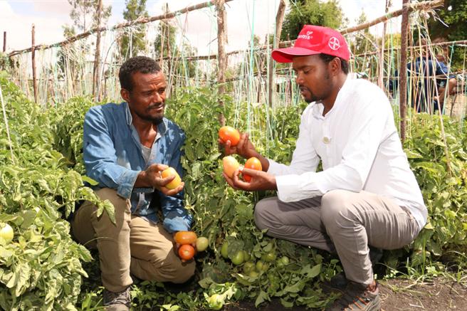 Mit Zugang zu hochwertigem Saatgut und Know-How können Kleinbauern ihre Erträge und Einkommen deutlich verbessern. © Bayer AG