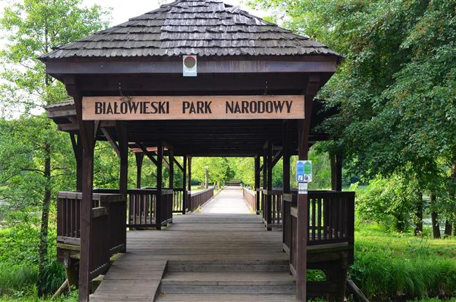 Das Ziel: der Nationalpark Bialowieza zwischen Polen und Weißrussland. © Creative Commons