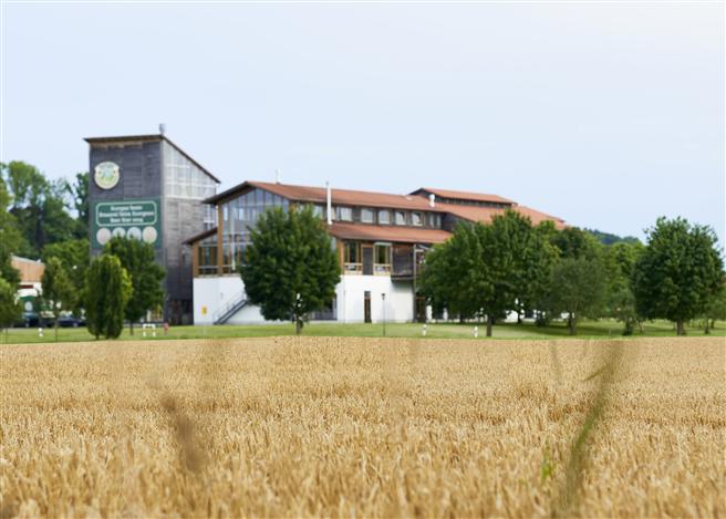 Die Ayinger Braugerste stammt ausschließlich von Landwirten aus dem Ort und aus dem Landkreis München. © Ayinger Privatbrauerei