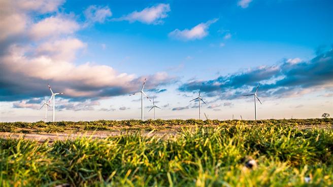 Nachhaltige Unternehmen haben eine höhere Produktivität und besitzen eine andere Führungsmentalität, da Innovationsfreude und konservative Werte kombiniert werden. © Free-Photos, pixabay.com