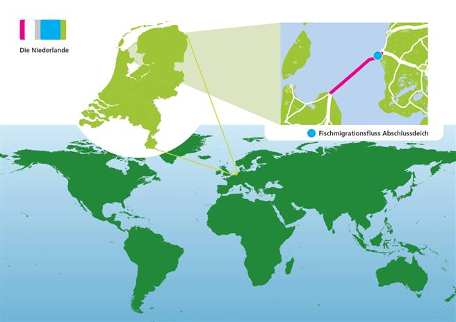 Der Fischmigrationsfluss entsteht am niederländischen Abschlussdeich. © Fryslan Marketing