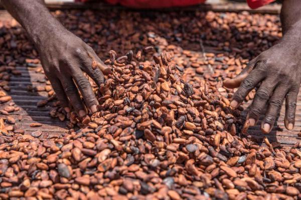 © King-Baudouin-African-Development-Prize/Flickr.com
