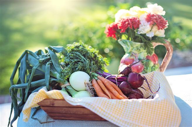 Frisches Gemüse ist reich an Vitaminen und Oxidantien. © jill111, pixabay.com