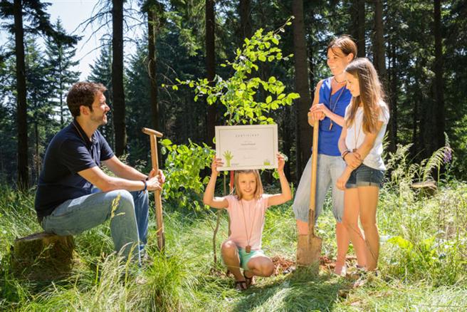 Baumpflanzaktion für das Projekt 'baumgeben' © Landal GreenParks