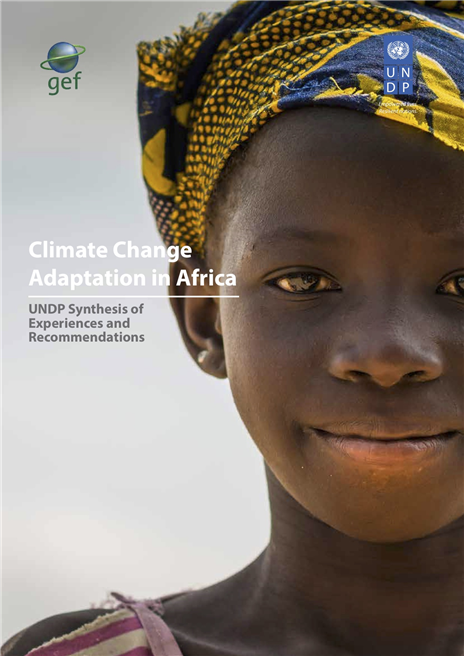 UNDP launches report at Poland climate talks calling on nations and world leaders to accelerate and mainstream climate actions across Africa to meet Paris Agreement targets. © UNDP