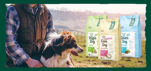 Green Petfood: Für Hund & Halter mit Umweltbewusstsein. © SolStock, istockphoto.com