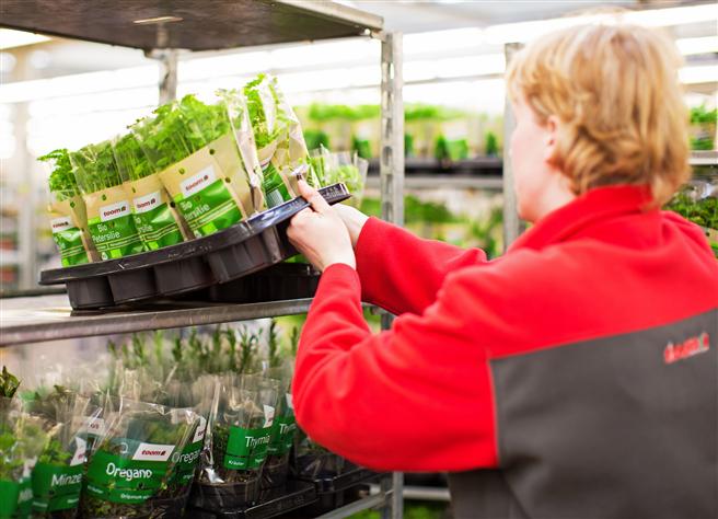 toom hat sich zum Ziel gesetzt, das Thema Verpackungsvermeidung im Pflanzenbereich weiter voran zu treiben. © toom