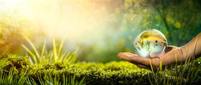 Die neue Kampagne von toom macht auf gleich drei gute Gründe für einen Einkauf bei toom aufmerksam: 'Gut für mich. Gut für die Umwelt. Gut für mein Portemonnaie.' © toom / AdobeStock