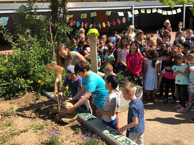 So schön sah Gemeinschaft während der letzten vier Pflanzwettbewerbe aus. Dieses Jahr dürfen Gruppen nicht mehr teilnehmen, aber im Familienkreis geht einiges! © Kranichdammschule